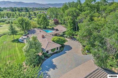 Washoe County Single Family Home For Sale: 8999 Panorama
