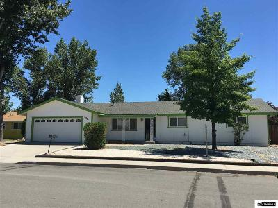 Carson City County Single Family Home New: 3317 Dilday Drive