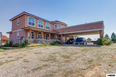 Washoe County Single Family Home New: 2375 Cactus View Dr