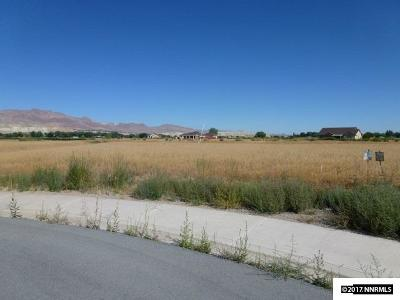 Yerington Residential Lots & Land For Sale: 406 Cascade Ct