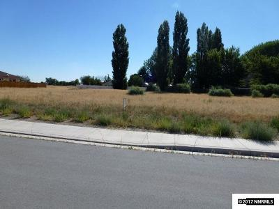 Yerington Residential Lots & Land For Sale: 902 S Whitacre St