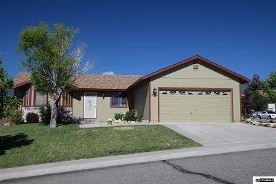 Carson City Single Family Home For Sale: 3572 Loam