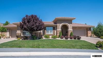 Reno Single Family Home For Sale: 6225 Sierra Mesa Drive