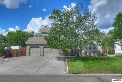 Washoe County Single Family Home For Sale: 815 Cliff View Dr