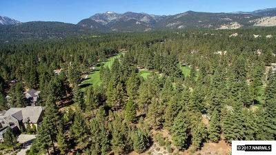 Reno Residential Lots & Land Extended: 20163 Bordeaux Drive