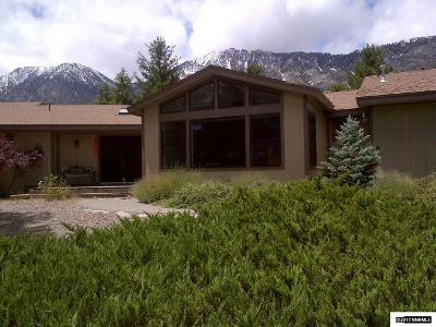 Gardnerville Single Family Home For Sale: 241 Sierra Shadows Lane