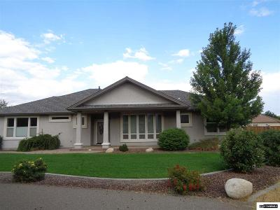 Gardnerville Single Family Home For Sale: 951 Old Nevada Way