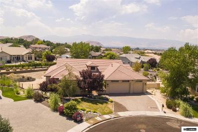 Single Family Home For Sale: 320 Desert Meadow Ct.