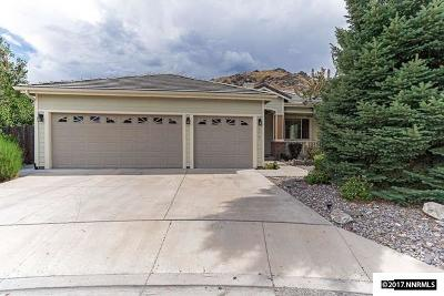 Carson City Single Family Home For Sale: 377 Sussex Place