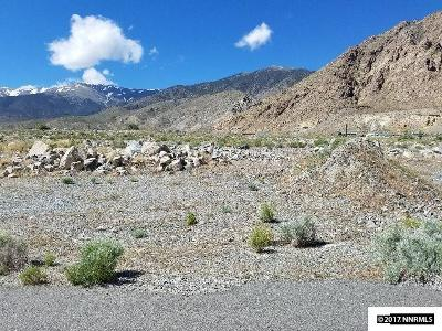 Residential Lots & Land For Sale: 211 Shores Drive, Hawthorne, Nv