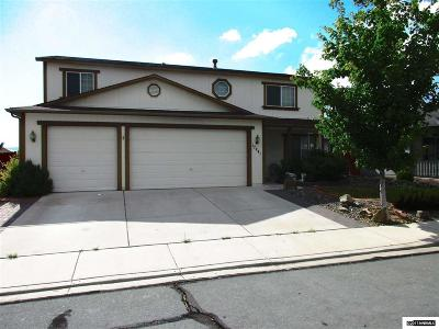 Washoe County Single Family Home For Sale: 17441 Crystal Canyon Blvd