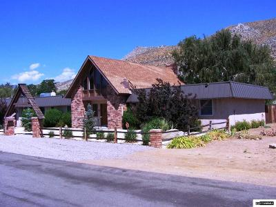 Carson City Single Family Home For Sale: 98 Paul Way