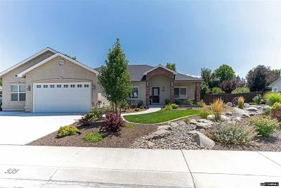 Gardnerville Single Family Home For Sale: 939 Springfield