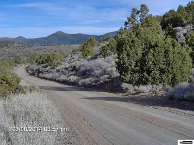 Reno Residential Lots & Land For Sale: 3480 Dry Lake Rd