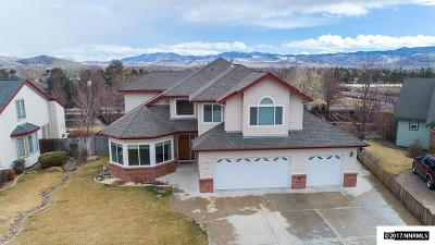 Carson City Single Family Home For Sale: 2119 Homann Way