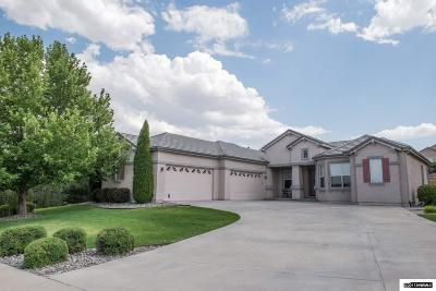 Reno Single Family Home For Sale: 222 Snow Creek Ct.