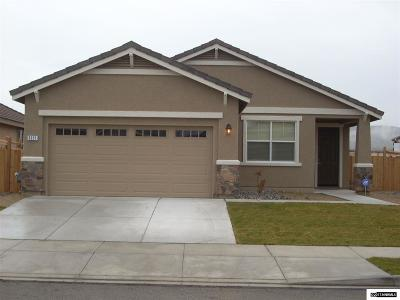 Washoe County Single Family Home New: 7123 Diversey Drive