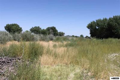 Yerington Residential Lots & Land For Sale: Sprague