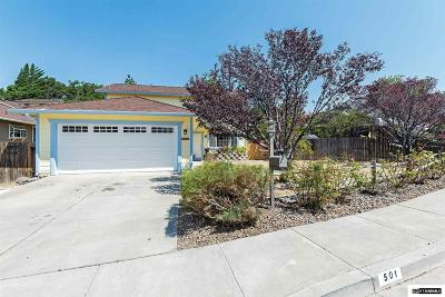 Reno Single Family Home New: 501 Tarn Way