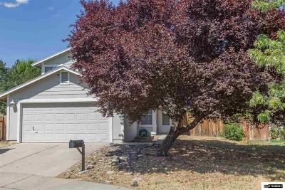 Reno Single Family Home New: 6073 Warm River Rd