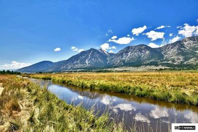 Gardnerville Residential Lots & Land For Sale: Pcl #1 Mottsville Meadows Way