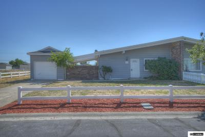 Reno Single Family Home New: 12002 Andes St