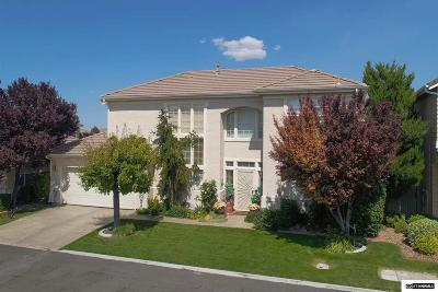 Washoe County Single Family Home New: 9672 Truckee Meadows