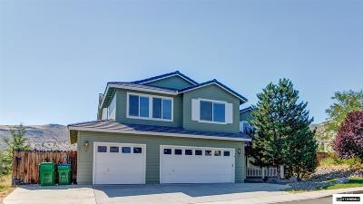 Washoe County Single Family Home New: 4085 Twin Falls Dr
