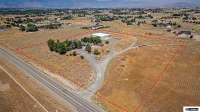 Gardnerville Single Family Home For Sale: 1836 Fish Springs Road