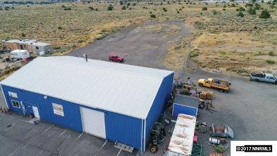 Moundhouse NV Commercial For Sale: $450,000
