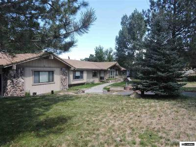 Carson City County Single Family Home For Sale: 4040 County Line