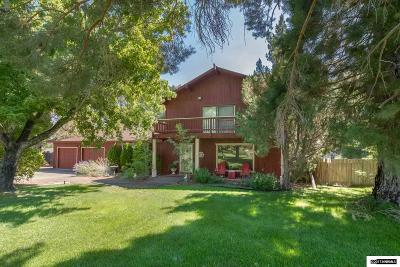 Gardnerville Single Family Home For Sale: 255 Beverly Way