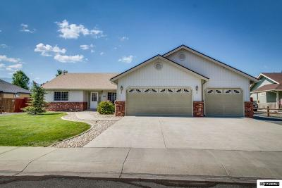 Gardnerville Single Family Home For Sale: 1022 Silveranch Drive