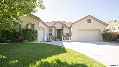 Washoe County Single Family Home For Sale: 8160 Willow Ranch Trl