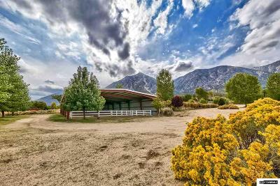 Gardnerville NV Single Family Home For Sale: $3,100,000