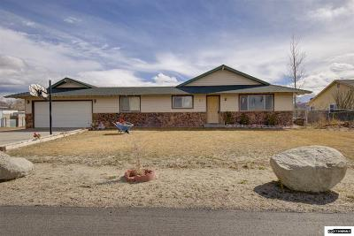 Gardnerville Single Family Home For Sale: 851 Whitney Way