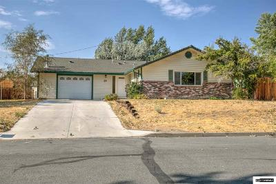Carson City Single Family Home For Sale: 21 Milliman