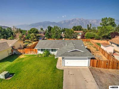 Gardnerville Single Family Home For Sale: 616 Victoria Ct