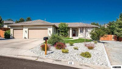 Washoe County Single Family Home For Sale: 45 Chinchilla Lane
