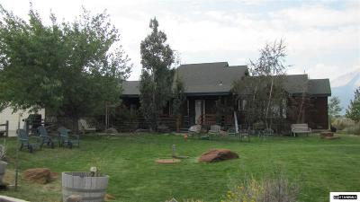 Washoe County Single Family Home For Sale: 3495 Lakeshore Drive
