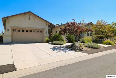 Washoe County Single Family Home For Sale: 529 Spirit Ridge