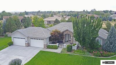 Washoe County Single Family Home For Sale: 12685 Silver Wolf