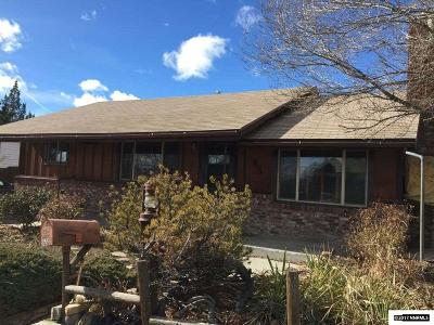 Washoe County Single Family Home For Sale: 65 Volmer Way