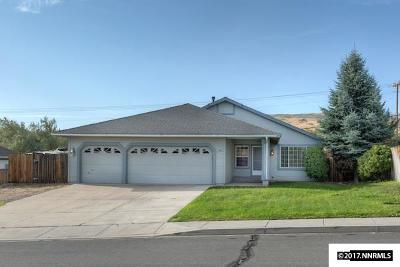 Washoe County Single Family Home For Sale: 14485 Ghost Rider