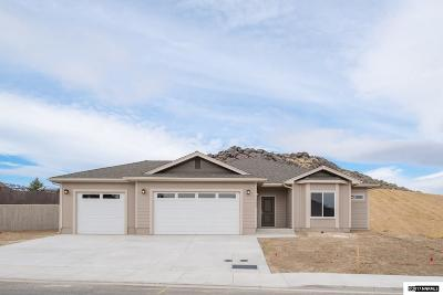 Carson City Single Family Home For Sale: 4044 Hells Bells Rd
