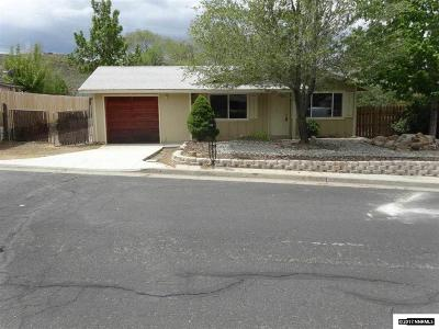 Washoe County Single Family Home New: 410 Palace Dr.