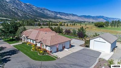Gardnerville Single Family Home For Sale: 426 Arlene Marie Lane