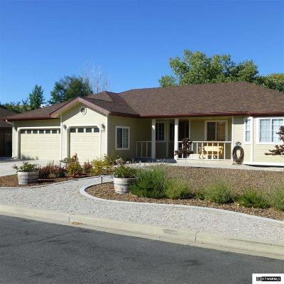 Carson City Single Family Home New: 230 Pasture Drive