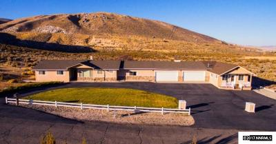Carson City Single Family Home For Sale: 810 Buck Way #In-Law Q