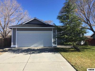 Gardnerville Single Family Home For Sale: 693 Joette